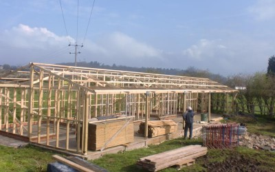 Stable Block During Build